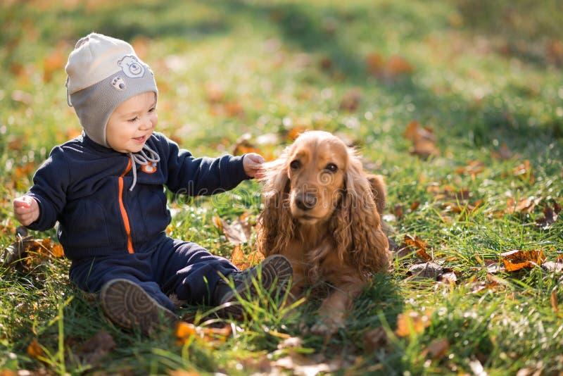 Jongenszitting op het gras met een hond stock foto