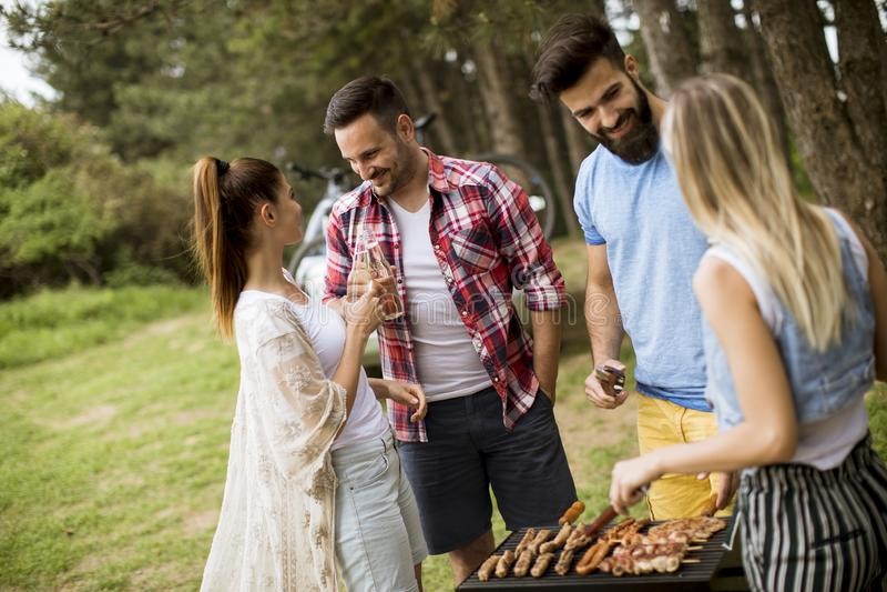 Jongeren die barbecue van partij in de aard genieten royalty-vrije stock foto