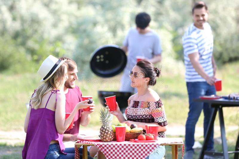 Jongeren die barbecuepartij in park hebben royalty-vrije stock foto
