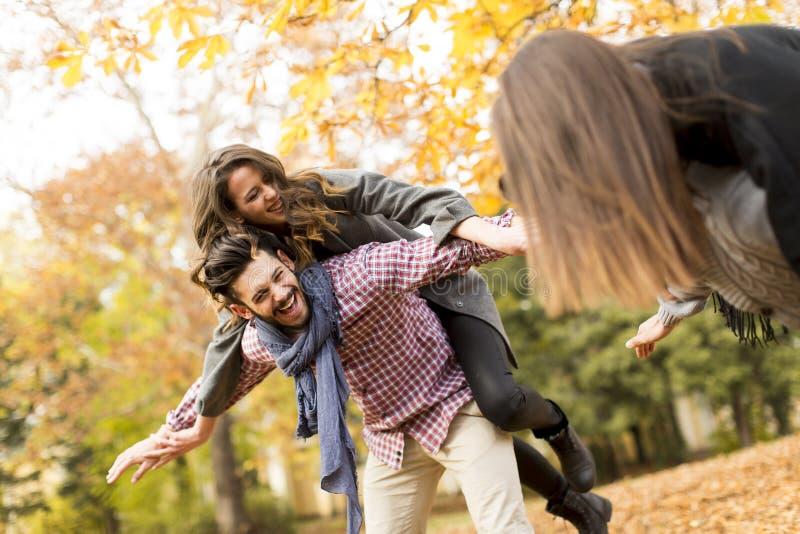Jongeren die pret in het de herfstpark hebben stock afbeelding