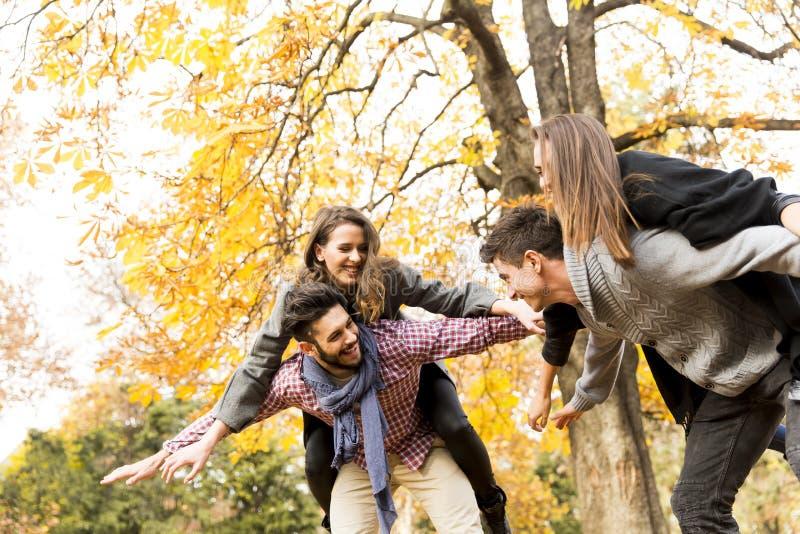 Jongeren die pret in het de herfstpark hebben royalty-vrije stock fotografie