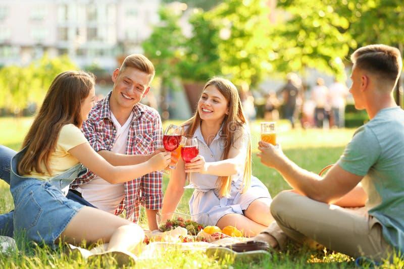 Jongeren die van picknick in park genieten royalty-vrije stock foto