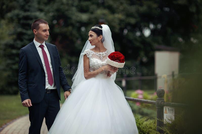 Jonggehuwde die valentynes in een romantisch Europees park het stellen met nam toe stock fotografie