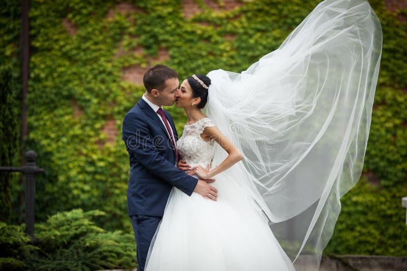 Jonggehuwde die valentynes en in een backgrou van parkwijnstokken koesteren kussen royalty-vrije stock fotografie