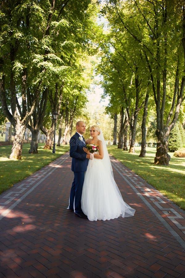 Jonggehuwden in het park teder worden omhelst dat royalty-vrije stock foto's