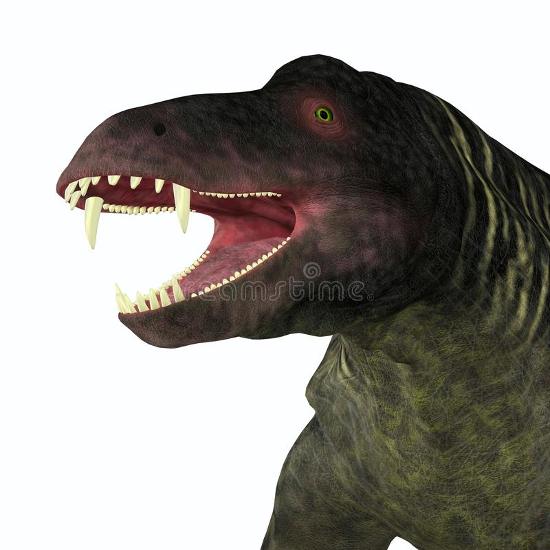 Jonkeria Dinosaur Head. Jonkeria truculenta was an omnivorous therapsid dinosaur that lived in South Africa during the Permian Period vector illustration