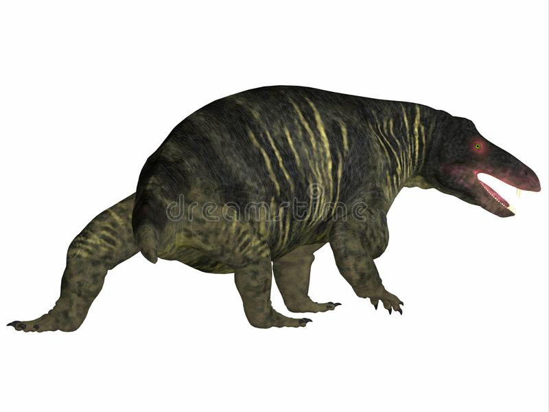 Jonkeria Dinosaur Tail. Jonkeria truculenta was an omnivorous therapsid dinosaur that lived in South Africa during the Permian Period stock illustration