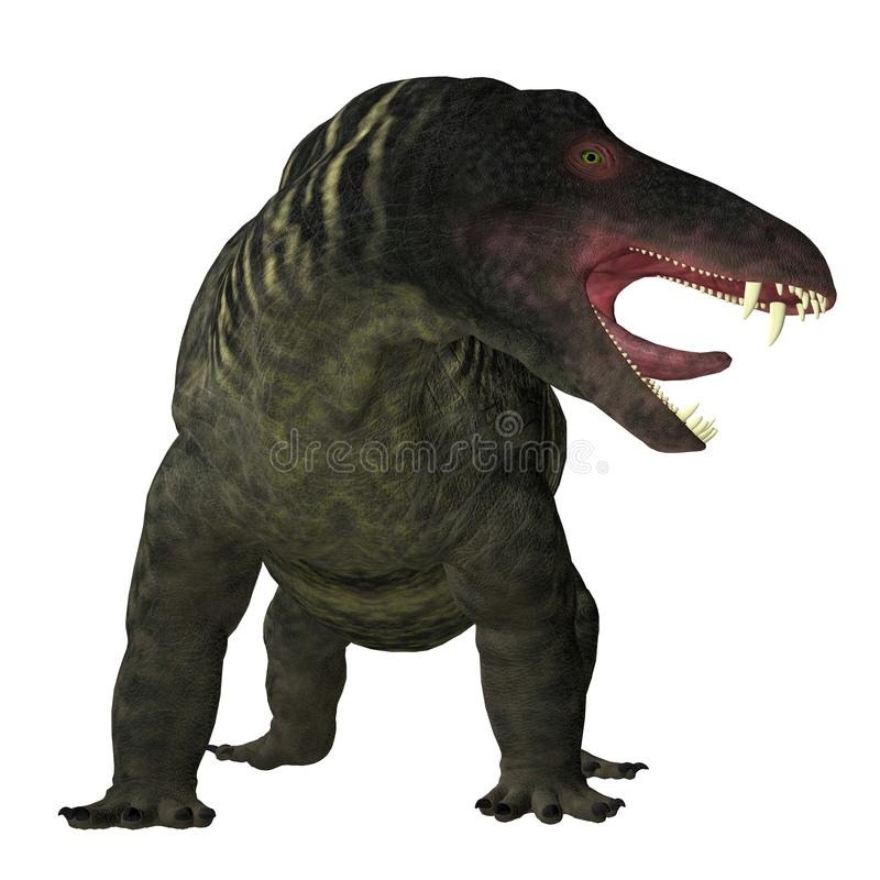 Jonkeria Dinosaur on White. Jonkeria truculenta was an omnivorous therapsid dinosaur that lived in South Africa during the Permian Period vector illustration