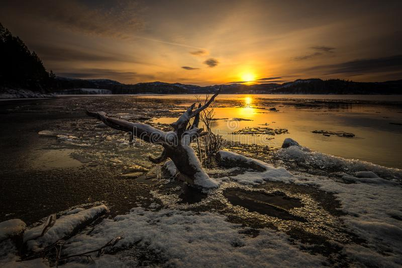 Jonsvatnet湖,第一雪,冬时,挪威结冰的岸在特隆赫姆附近的 免版税库存图片