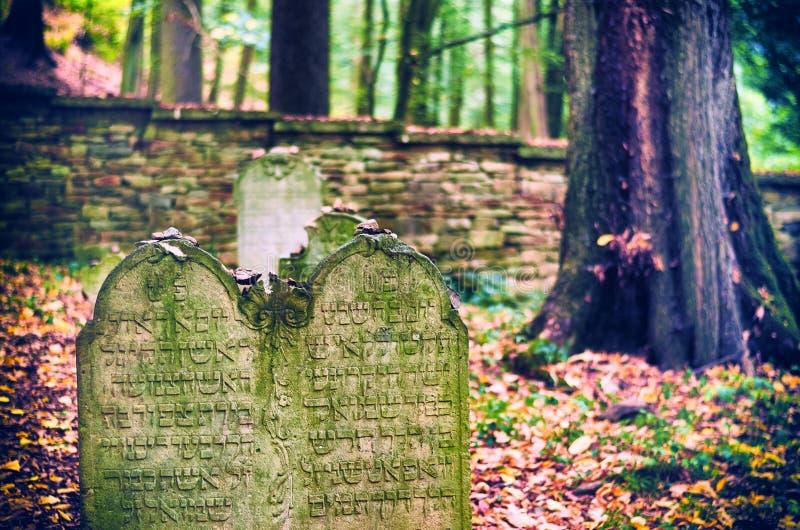 Joodse Begraafplaats dichtbij Dobruska stock afbeeldingen