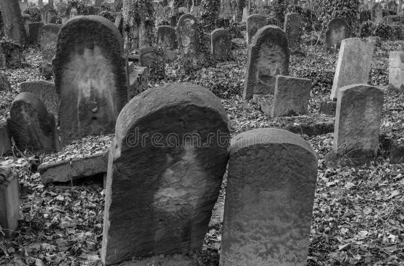Joodse Begraafplaats in Krakau Polen royalty-vrije stock afbeelding