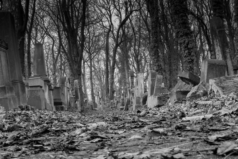 Joodse Begraafplaats in Krakau Polen royalty-vrije stock fotografie