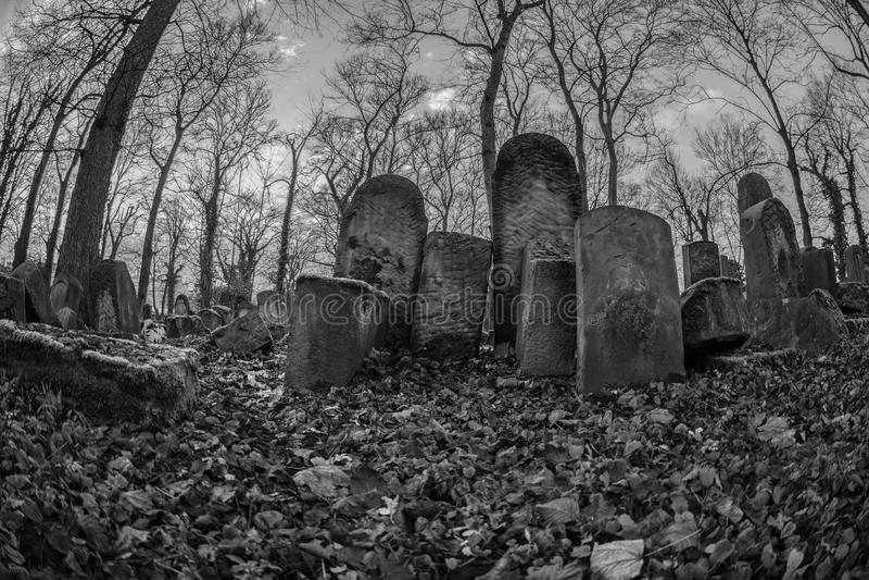 Joodse Begraafplaats in Krakau Polen stock fotografie
