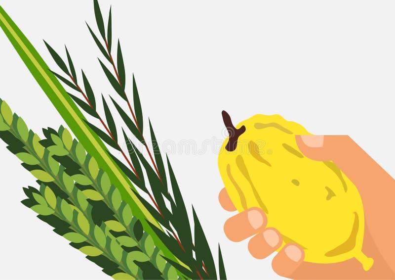 Joodse vakantie Sukkot Lulav, Etrog, Arava en Hadas vector illustratie