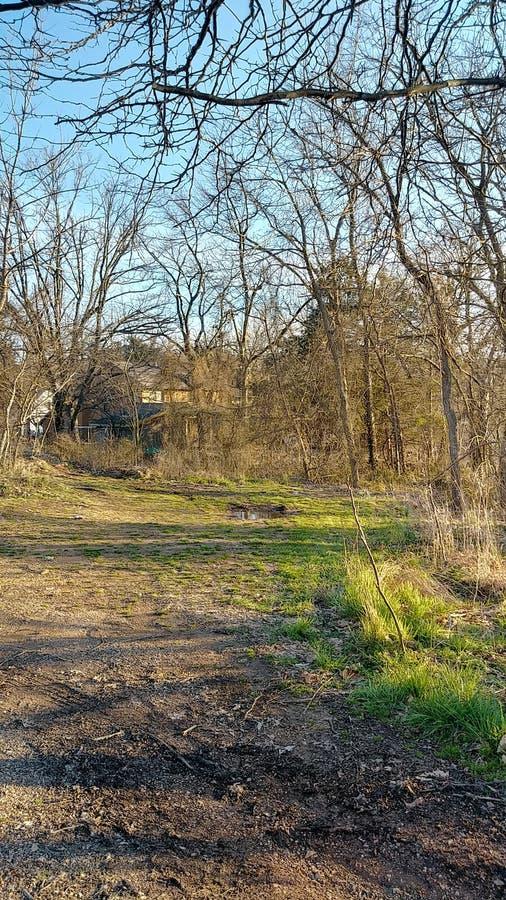 Joplin Missouri Christina Farino Waterfall en primavera fotos de archivo