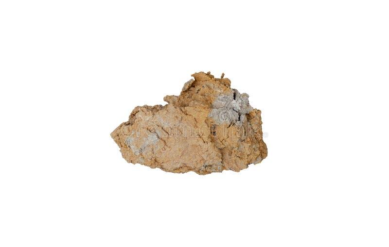 Jord i jord arkivbild