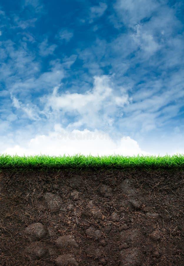 Jord med gräs i blå himmel stock illustrationer