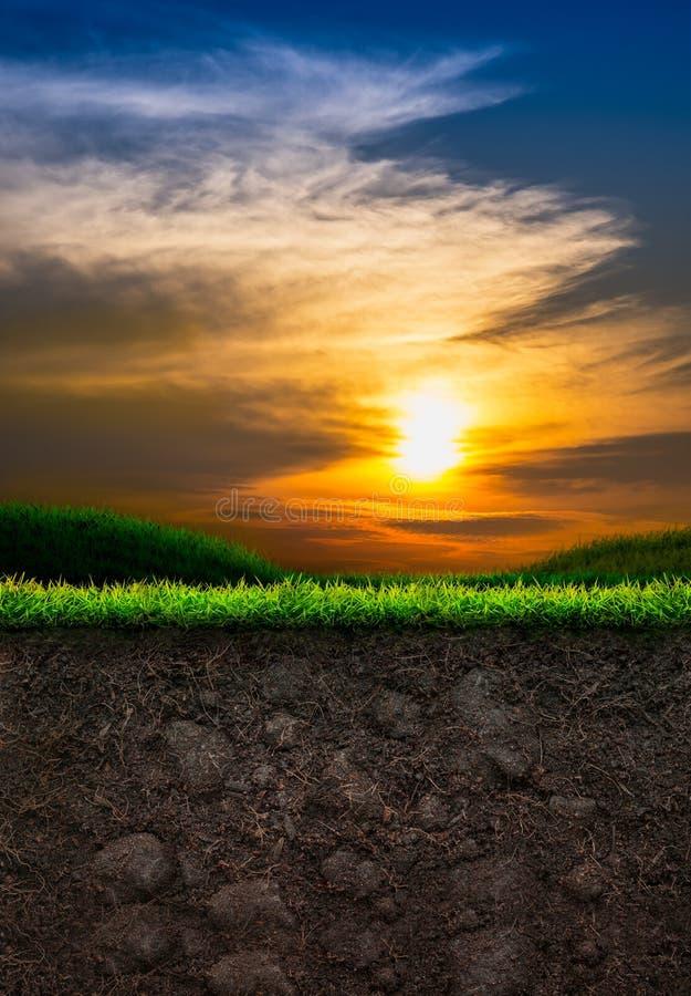 Jord med gräs i solnedgångbakgrund royaltyfri foto