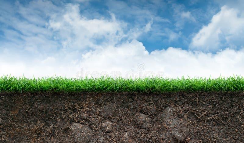 Jord och gräs i blå himmel royaltyfri illustrationer
