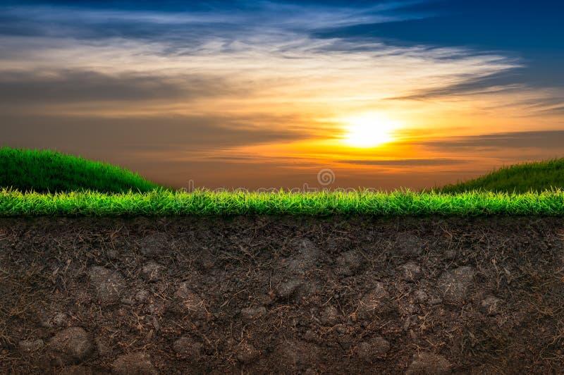 Jord och gräs i solnedgångbakgrund royaltyfri bild