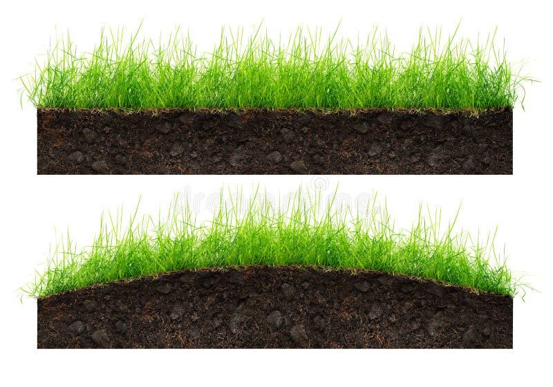 Jord och grönt gräs arkivbild
