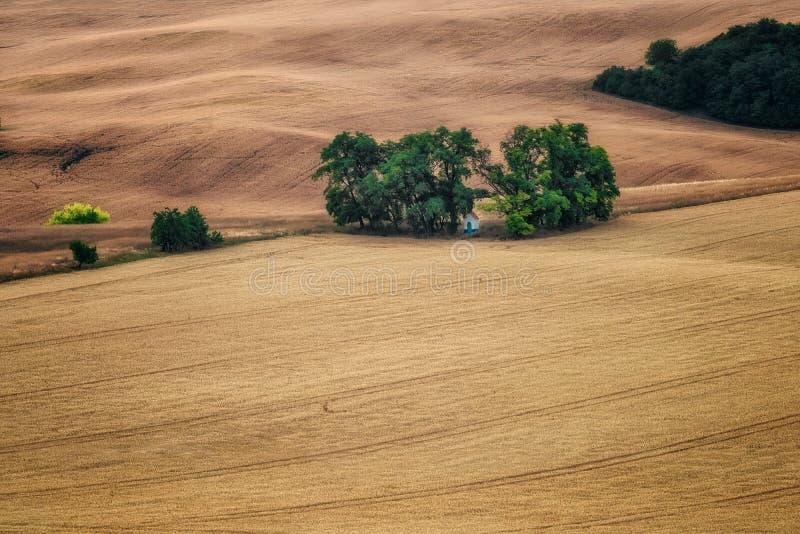 Jord vinkar bakgrund i s?dra Moravia fotografering för bildbyråer
