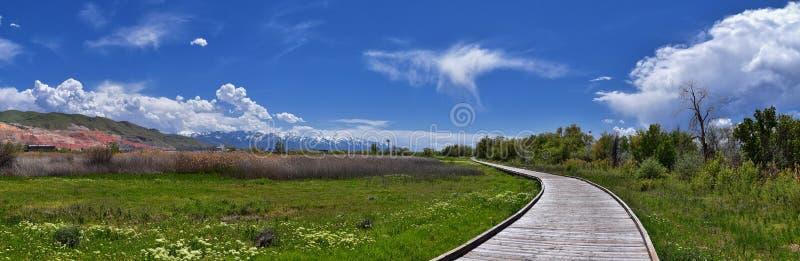 Jordan River Parkway Trail redwoodtr?d Trailhead som gr?nsar legatg?ngall?slingan, panoramasikter med omgeende tr?d och slam f arkivbilder