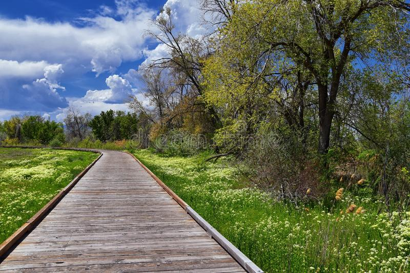 Jordan River Parkway Trail, s?quoia Trailhead encadrant la tra?n?e de route express de legs, les vues de panorama avec les arbres photos stock
