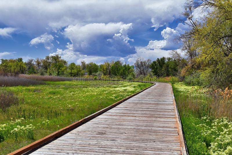 Jordan River Parkway Trail, s?quoia Trailhead encadrant la tra?n?e de route express de legs, les vues de panorama avec les arbres photo stock