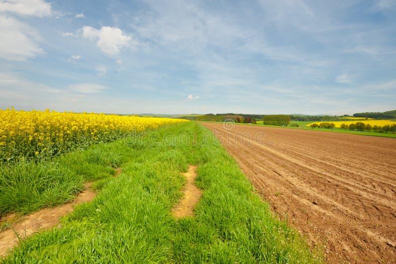 Download Jordbruk fotografering för bildbyråer. Bild av kantjustering - 27281481