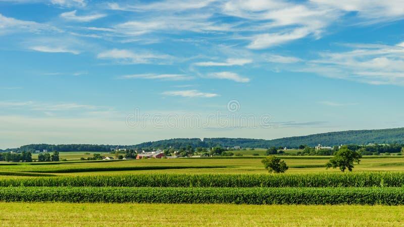 Jordbruk för fält för ladugård för Amish landslantgård i Lancaster, PA royaltyfri fotografi