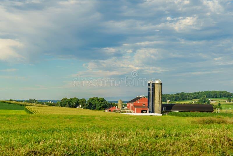 Jordbruk för fält för ladugård för Amish landslantgård i Lancaster, PA arkivfoto