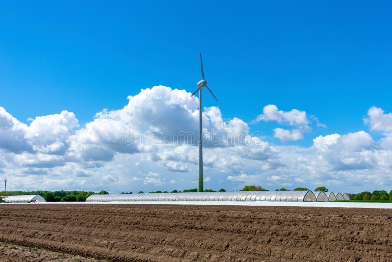 Jordbruk och vindkraft med sparrisfältet och växthus royaltyfri bild