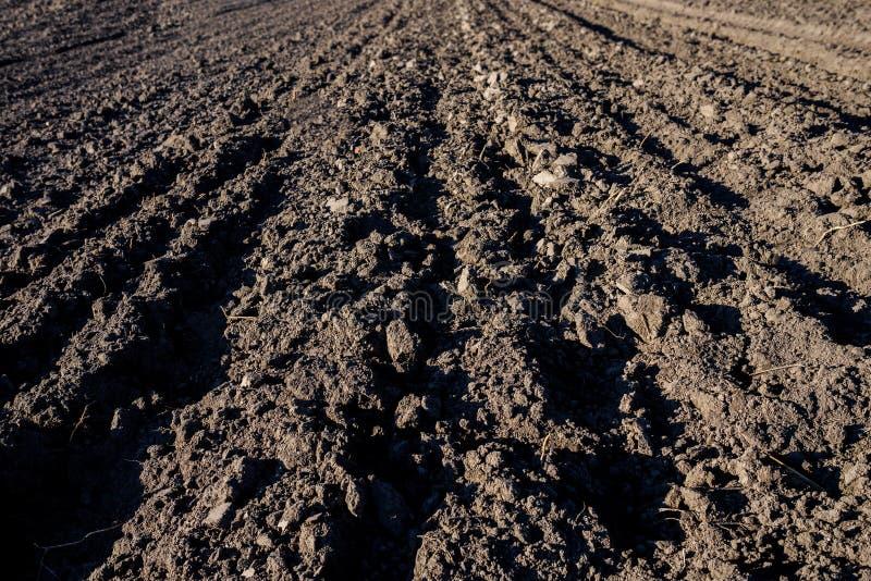 Jordbruks- bakgrund av nyligen plogade fältfåror som är klara för nya skördar Nära fokus royaltyfri fotografi