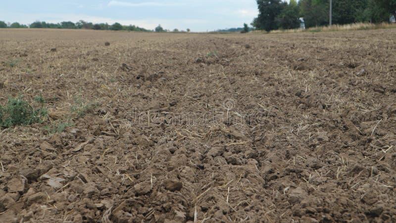 jordbruks- fält efter skörd: jord, jordning och land arkivfoto