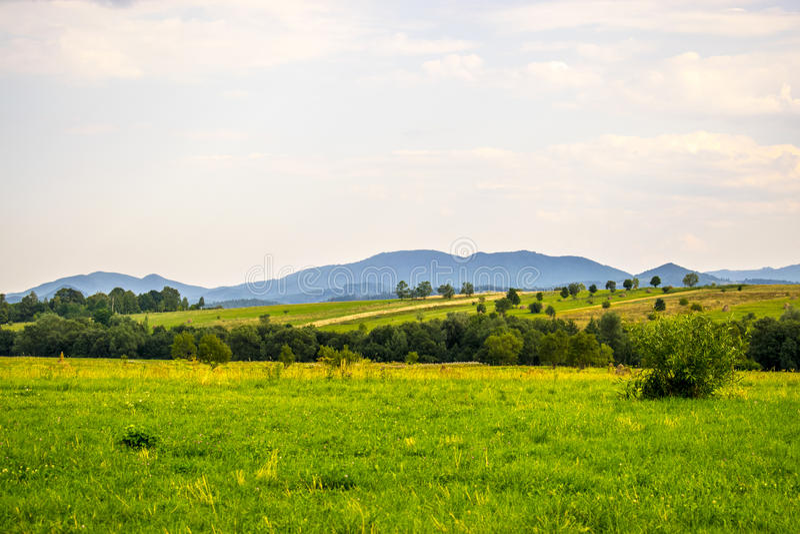 Jordbruks- fält i Carpathians royaltyfria bilder