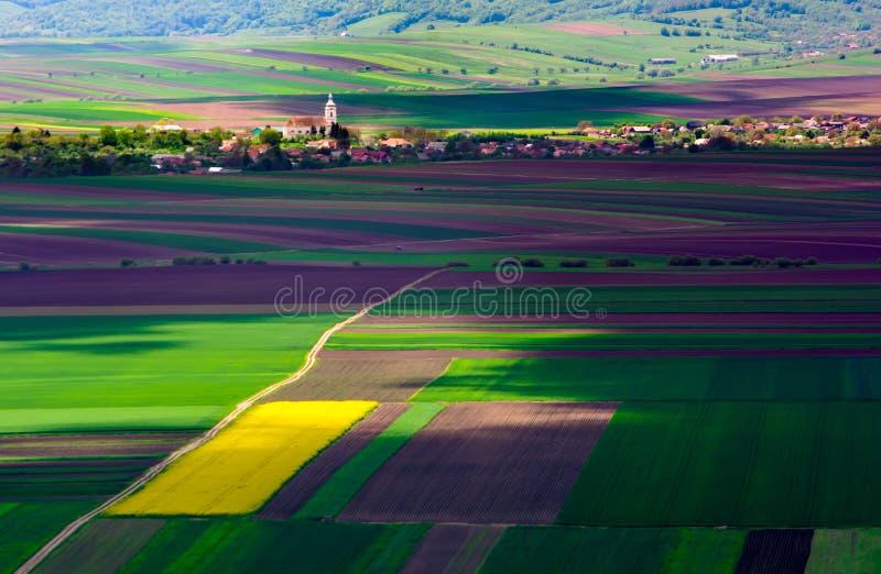 Jordbruks- fält på en sommardag med den Transylvania byn royaltyfri foto