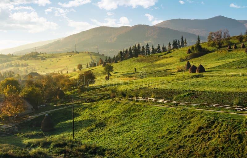 Jordbruks- fält på lutningar på dimmig morgon royaltyfria bilder