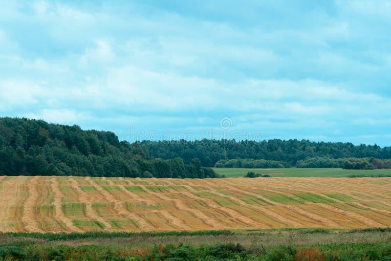 jordbruks- fältliggande arkivfoton