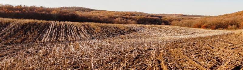 Jordbruks- höstlandskap i New England, USA royaltyfria bilder