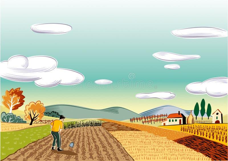 Jordbruks- landscapeagricultural landskap som är kultiverat med olika grönsaker stock illustrationer