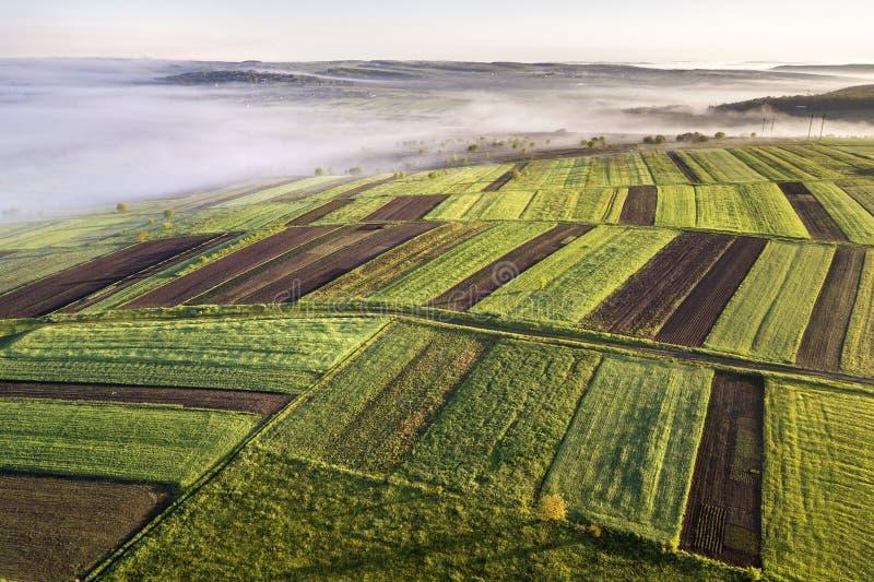Jordbruks- landskap från luft på solig vårgryning Gröna och bruna fält, morgondimma arkivfoto