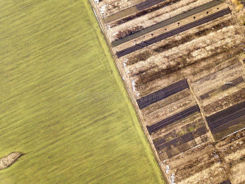 Jordbruks- landskap från luft Rak smal jordväg mellan soliga gröna, torra och bruna plogade fält fotografering för bildbyråer
