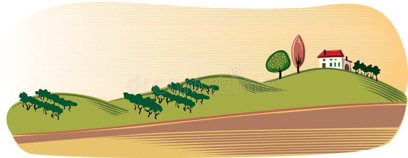 Jordbruks- landskap med coltivatefält royaltyfri illustrationer