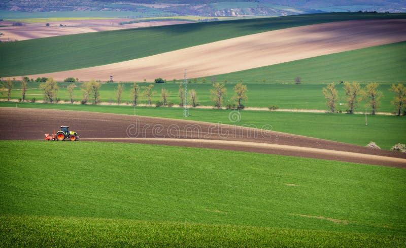 Jordbruks- landskap med traktoren som plogar ett randigt brunt fält i södra Moravia på solnedgången, härlig sikt på Rolling Hills arkivfoton