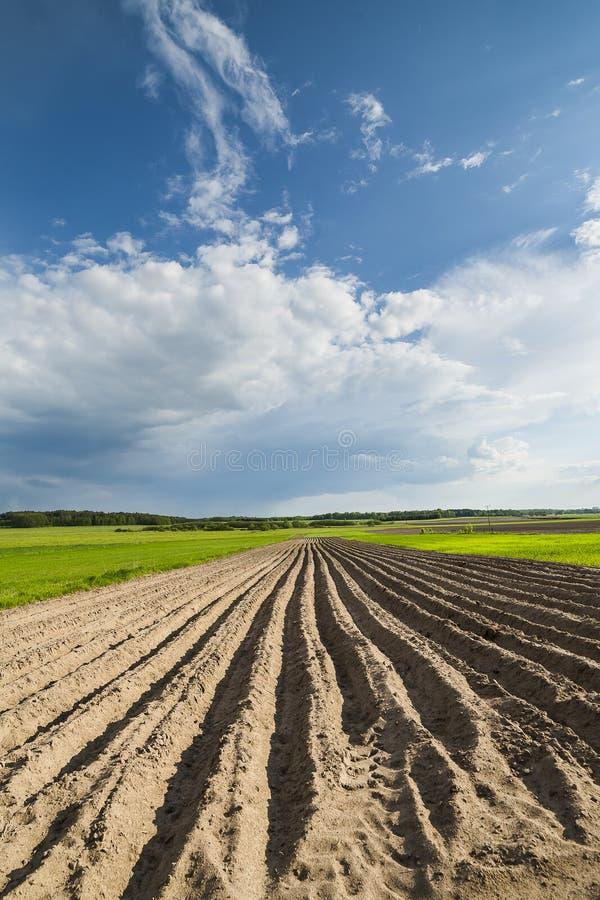 Jordbruks- landskap, plogat fält royaltyfria foton
