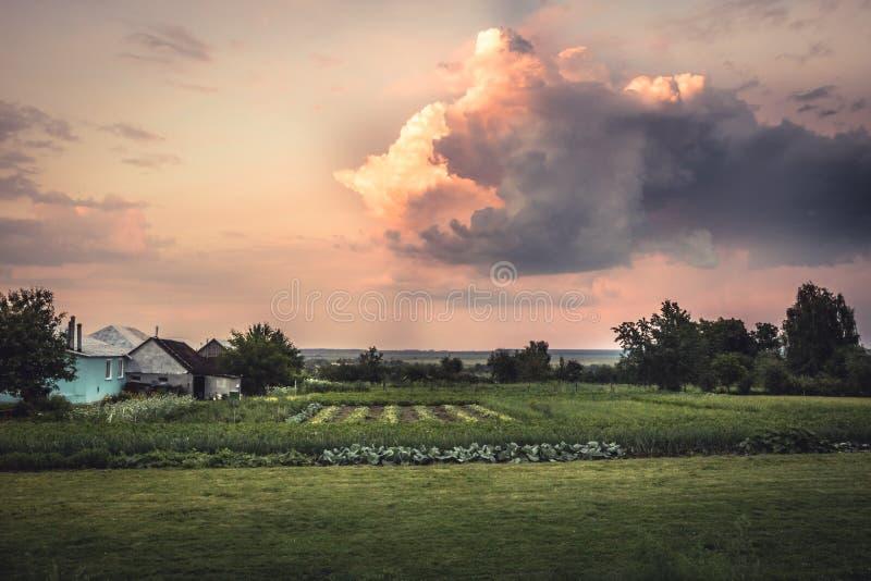 Jordbruks- lantgårdbygdlandskap med dramatisk solnedgånghimmel och odlat fält på trädgård för grönsak för bonde` s royaltyfri foto
