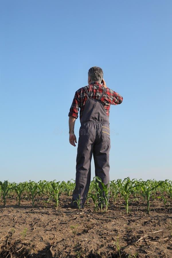Jordbruks- plats, bonde i havref?lt arkivfoto