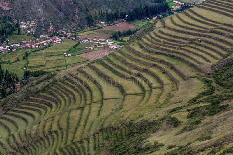 Jordbruks- terrasser av incaen fördärvar av Pisac, Peru royaltyfria foton
