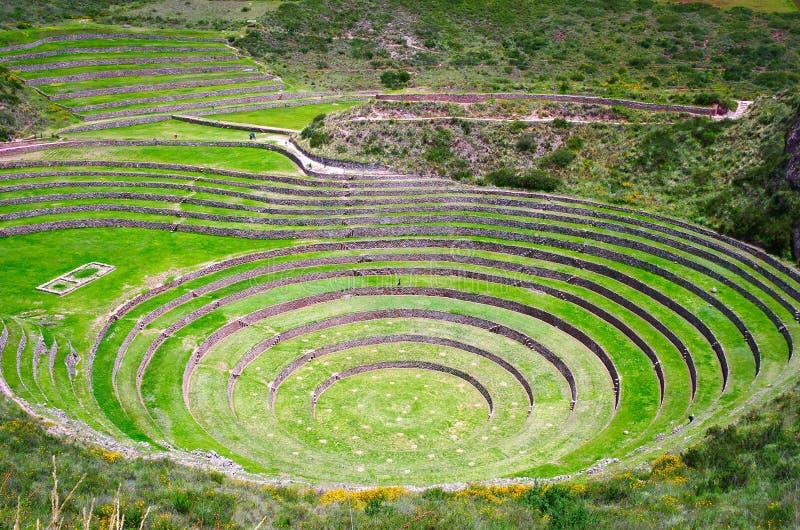 Jordbruks- terrasser i Moray, Peru arkivbilder